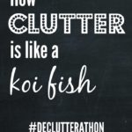 Clutter and koi fish have one huge thing in common, and it's destroying my house!