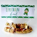 Leprechaun Bait printable