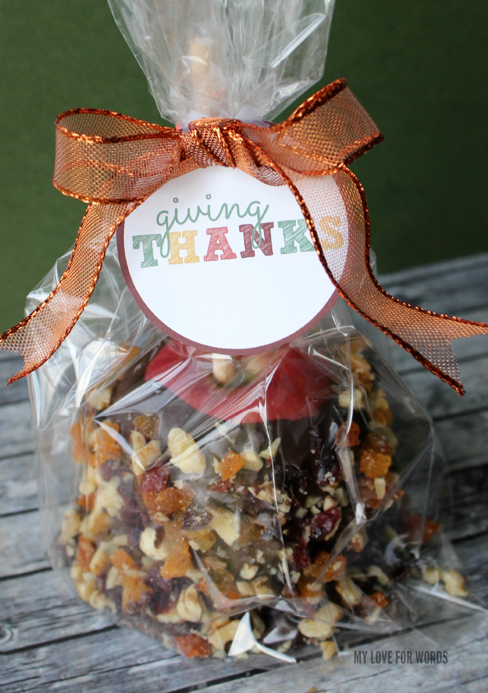 """Easy DIY Gourmet Caramel Apple and free printable """"Giving Thanks"""" tag. Great hostess gift for Thanksgiving!"""