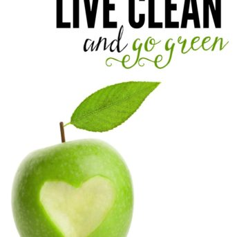 From clean, real food recipes and eco-friendly ideas, to DIY home and health remedies, these are simple ways to live clean and go green.