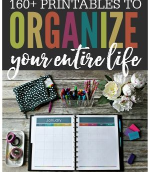 Organize your entire life with printables! These beautiful printables are made to keep your life tidy and in order. No more lost paperwork, forgotten passwords, or missing contact information. With the This Organized Life printable collection you'll be able to keep track of everything including your: daily tasks, appointments, finances, contacts, passwords, meal planning, health, fitness, kids, pets, cleaning, organization, and more!