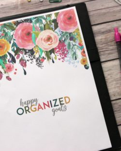 Happy Organized Goals