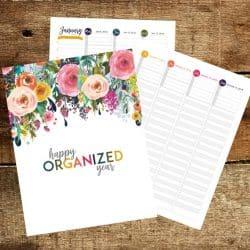 Printable 2018 Planner & Goals Workbook